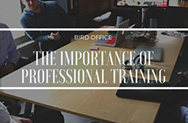 The importance of professional training