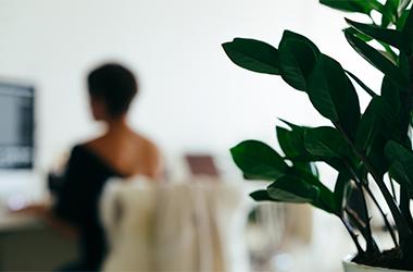 Transformez votre salle de réunion en salle atypique