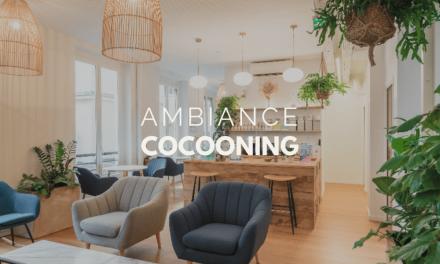 Créer une ambiance cocooning dans votre salle de réunion