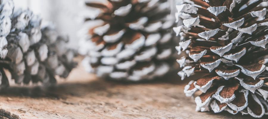 Noël en entreprise les do et les dont 1