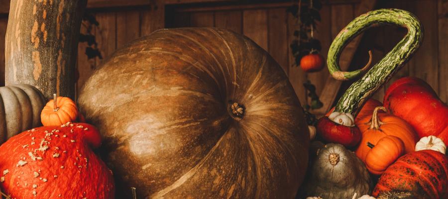 Organiser une fête d'Halloween en entreprise