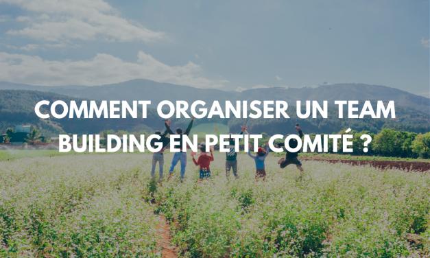 Comment organiser un teambuilding en petits groupes ?